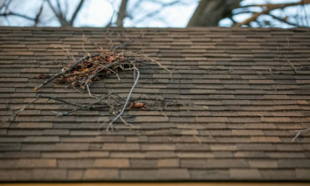 5 Warning Signs You May Need to Replace Your Roof